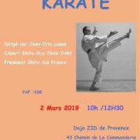 Stage Shito-Ryu dirigé par Jean-Eric Luqué 7e DAN FFKDA au dojo de la ZID de Provence le 2 Mars 2019